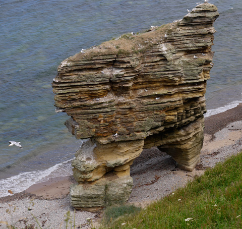 Sea Stack Formation